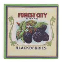 Thirstystone® Dolomite Forest City Blackberries Single Square Coaster