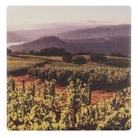 Thirstystone® Dolomite Napa Sunset Square Single Coaster