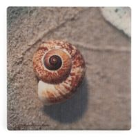Thirstystone® Dolomite Sand Surf Shell Single Square Coaster