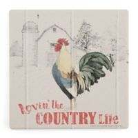 Thirstystone® Dolomite Lovin' the Country Life Square Single Coaster