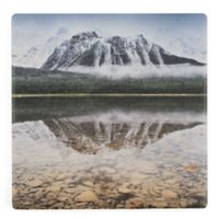 Thirstystone® Dolomite Waterfowl Lake Single Square Coaster