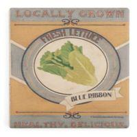 Thirstystone® Dolomite Vintage Produce Lettuce Single Square Coaster