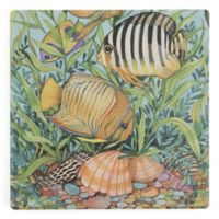 Thirstystone® Seashells II Single Square Coaster