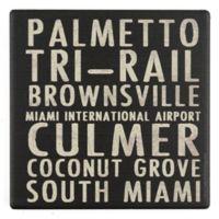 Thirstystone® Dolomite Miami Typography Square Single Coaster
