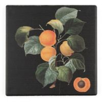Thirstystone® Dolomite Unpeche Single Square Coaster