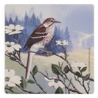 Thirstystone® Dolomite Brown Thrasher Square Single Coaster