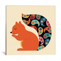 iCanvas Paisley Squirrel 26-Inch Square Canvas Wall Art