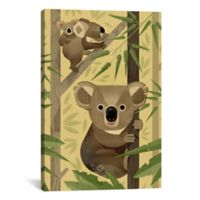 iCanvas I Koalas 26-Inch x 40-Inch Canvas Wall Art