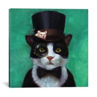 iCanvas Tuxedo Cat 12-Inch Square Canvas Wall Art