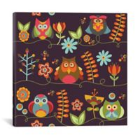 iCanvas Owls and Flowers ll 12-Inch Square Canvas Wall Art
