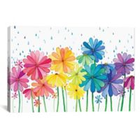iCanvas Rain Rainbow 18-Inch x 26-Inch Canvas Wall Art