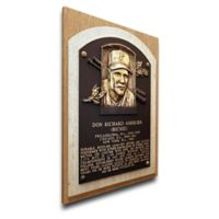 MLB Philadelphia Phillies Richie Ashburn That's My Ticket Hall of Fame Canvas Plaque