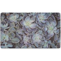 Chef Gear Succulents Gelness Anti-Fatigue Kitchen Mat