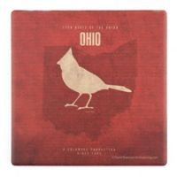 Thirstystone® Dolomite Ohio State Minimalist Single Coaster