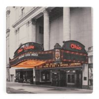 Thirstystone® Dolomite Ohio in Lights Single Coaster