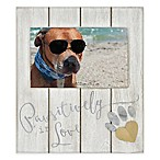 "Coastal ""Pawsitively in Love"" 4-Inch x 6-Inch Wood Picture Frame Collection"