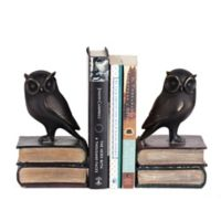 Danya B. Owl on Books Bookend Set in Bronze