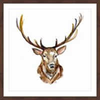 Marmont Hill Buck Face 24-Inch Square Framed Canvas Wall Art