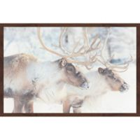 Marmont Hill Gentle Pair 24-Inch x 16-Inch Framed Wall Art