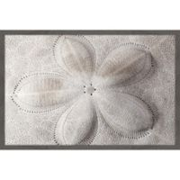 Marmont Hill Shell Fingerprint 24-Inch x 36-Inch Framed Wall Art