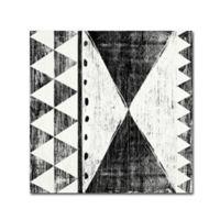 Trademark Fine Art Patterns of Savanna II 24-Inch Square Canvas Wall Art