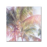 Trademark Fine Art Dream Palm II 35-Inch Square Canvas Wall Art
