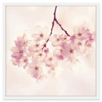 Marmont Hill Cherry Blossoms 18-Inch sq. Framed Wall Art