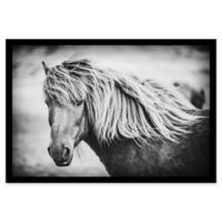 Marmont Hill Beautiful Mane 36-Inch x 24-Inch Shadow Box Canvas Wall Art