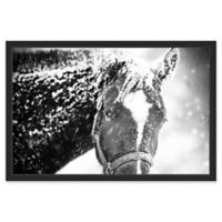 Marmont Hill White Horse Mask 24-Inch x 16-Inch Framed Wall Art