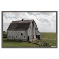 Marmont Hill Pastoral History 18-Inch x 12-Inch Framed Wall Art