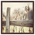 Marmont Hill Through the Fence 12-Inch Square Framed Wall Art