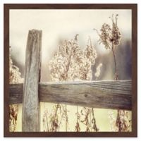 Marmont Hill Through the Fence 18-Inch Square Framed Wall Art