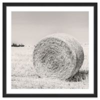 """Marmont Hill Ready for Winter 32"""" x 32"""" Framed Wall Art"""