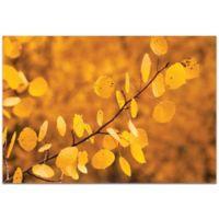 Metal Art Studio Yellow Leaves Indoor/Outdoor 32-Inch x 22-Inch Plexiglas Wall Art