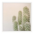 Marmont Hill Fuzzy Cactus 12-Inch x 12-Inch Framed Wall Art