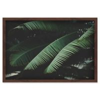 Marmont Hill Night in the Tropics 12-Inch x 18-Inch Shadow Box Wall Art