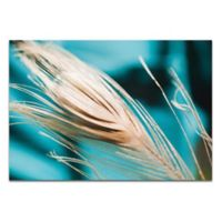 Metal Art Studio Turquoise Feather 32-Inch x 22-Inch Wall Art in Metal