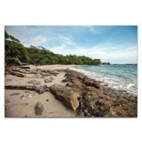 Metal Art Studio Tropical Jungle 32-Inch x 22-Inch Plexiglass Coastal Wall Art in High Gloss Finish