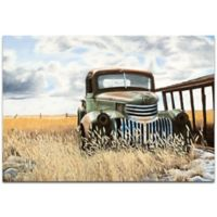 Metal Art Studio Todd Mandeville Swede's Old Truck 32-Inch x 22-Inch Plexiglas Wall Art