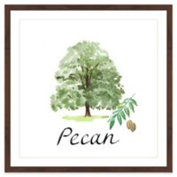 "Marmont Hill ""Pecan Tree"" 24-Inch Square Framed Wall Art"