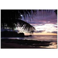 Metal Art Studio Sunset Palms 32-Inch x 22-Inch Metal Wall Art
