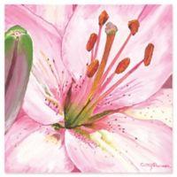 Metal Art Studio Heart of a Pink Lily 22-Inch Square Plexiglas Wall Art