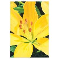 Metal Art Studio Heart of a Yellow Lily 22-Inch x 32-Inch Plexiglas Wall Art
