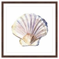 Marmont Hill Shell 40-Inch Square Framed Wall Art