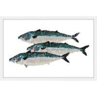 Marmont Hill Fish Trio 60-Inch x 40-Inch Framed Wall Art