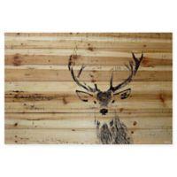 Parvez Taj Inquisitive Deer 24-Inch x 16-Inch Pinewood Wall Art