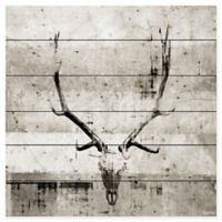Parvez Taj Long Antlers 32-Inch Square Wood Wall Art
