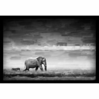 Parvez Taj Elephant 30-Inch x 20-Inch Shadow Box Canvas Wall Art