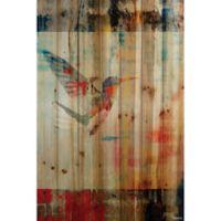 Parvez Taj Hummingbird Flies 24-Inch x 36-Inch Wood Wall Art