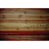 Parvez Taj Flying South 45-Inch x 30-Inch Pinewood Wall Art